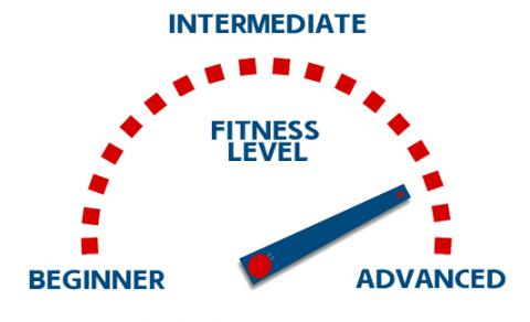 Whats Your Fitness Level