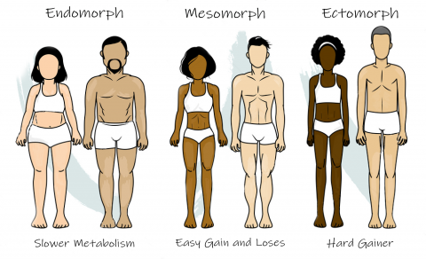 Whats Your Body Type
